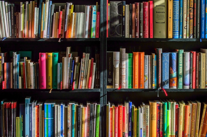 Four Must-Read Books for Any AdventureSeeker